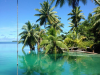 palmyra-atoll